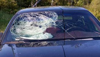 ALL ABOUT AUTO GLASS, WINDSHIELD REPLACEMENT