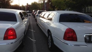 White stretch Limo 12 passenger to Rent
