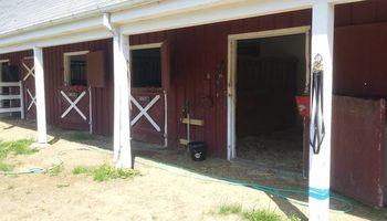 Willow Walker Farm. Horse Boarding Services