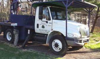 Galvez Tree Service inc.