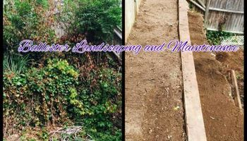 Call Ballester Landscaping and Maintenance!