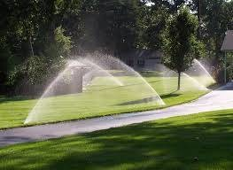 Irrigation and Sprinklers