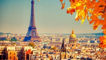French Tutor (all levels)