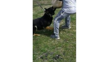 HOME PROTECTION K-9 TRAINING