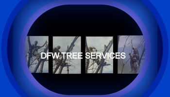 TREE CARE, PROFESSIONAL TREE SERVICE, CALL NOW