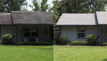 Do you need Roof Cleaning Service?
