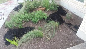 AUSTIN &SURROUND LAWN/ FENCING YARD CLEAN UP