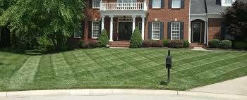 Kocourek Landscaping - perfessional landscaping (paver cleaning, spring/fall clean ups)