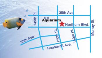 KHC Aquarium