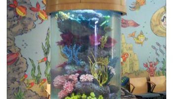 Blue Planet Aquarium Services