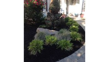 Landscaping - from weeding to installs!