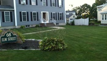 Landscaping and all yard cleanups for cheap