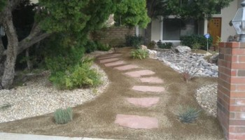 Landscape design/ Maintenance