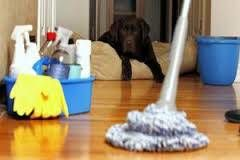 Miguel Murcia Cleaning service