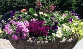 FloraScapes - Distinctive, Fine Garden Design and Care