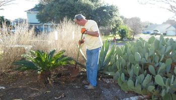Flower bed work, raised beds & agaves