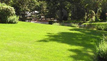 Lawn Service's