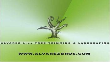 Alvarez Bros Tree Service & Landscaping. GARDENING SERVICE