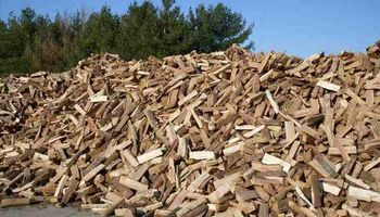 FIREWOOD SPLIT & DELEVERED 175 a CORD 45 yrs EXPERIENCE .