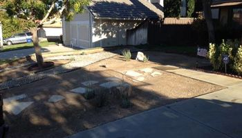 Landscaping - I can do it for you!