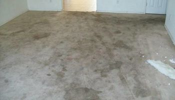 Aames Steam Carpet & Upholstery Cleaning