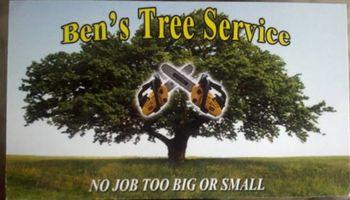 Ben's Tree Service