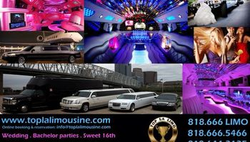 Limousine service : Concerts, Festivals, Events, Hollywood night out