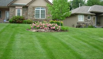 AFFORDABLE LAWNCARE!! $25.00 AND UP