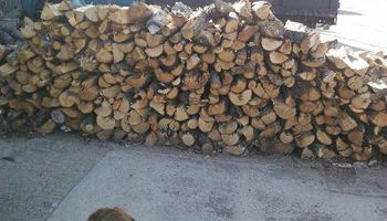 FIREWOOD deliverered or pickup - $75 1/4 cord