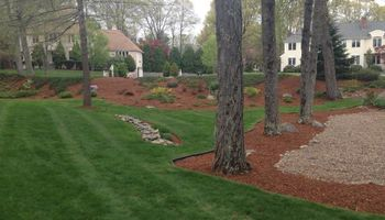 FALL CLEAN-UP and MULCHING