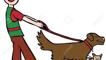 Dog Walker In West Hills $10
