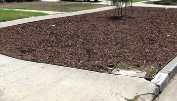 Drought Tolerant Yard installations