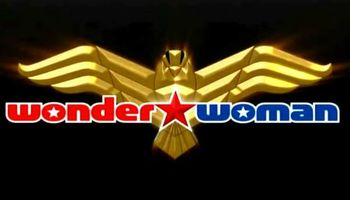 WonderWoman Cleaning Service