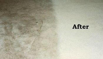 Maid Service & Carpet Cleaning 35+ Years of cleaning homes like yours