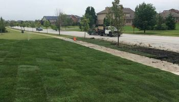 Fall Clean-ups, landscaping. stump grinding