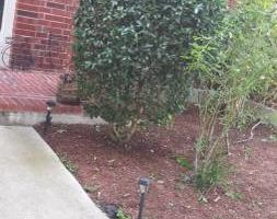 AVG landscaping service