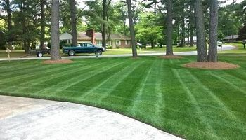 LAWN MOWING / CARE. Low Price!