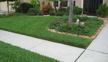 $40 TO TRIM MOW AND BLOW YOUR FRONT AND BACK YARD