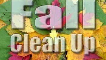 Fall Clean up. Same day estimates