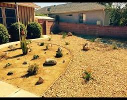 Sod, artificial turf and drought tolerant landscape