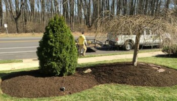1st Rate Lawngevity Lawn Services - Aeration specials