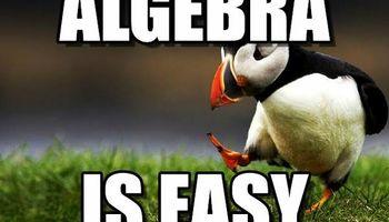 Tutor, Basic Math, Algebra, Biology and Chemistry