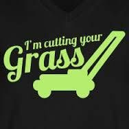 Catting the GRASS!