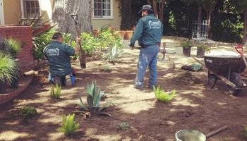 LS Landscapes provides Gardening and Landscaping Services!