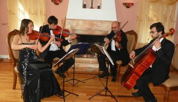 Bravo String Quartet, Violinist for Weddings and other Special Occasions