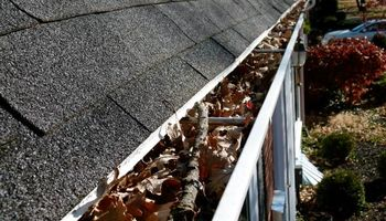 Gutter Cleaning Service!! LOCAL!