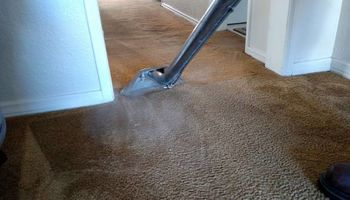 CARPET CLEANING UPHOLSTERY CLEANING PET ODOR