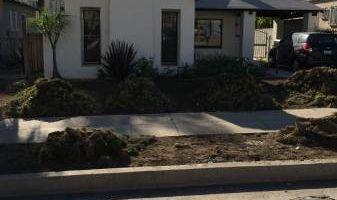 Landscape Design/Yard Work/Clean Ups...