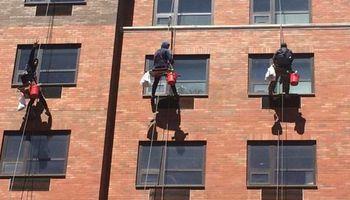 Domino Window Cleaning Inc.