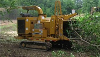 Cedar Clearing/chipping services